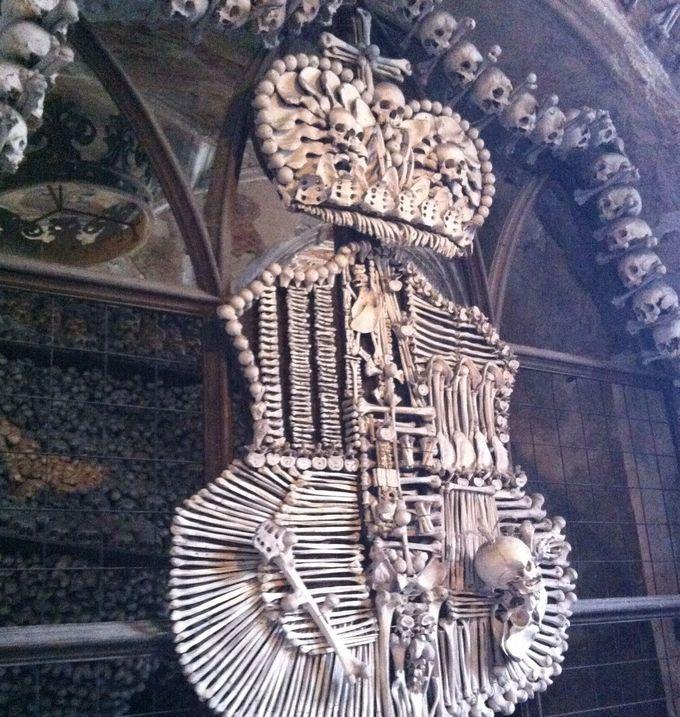 想像を超える数の骸骨に迎えられて驚愕、そして当惑