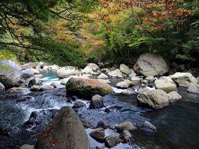こんなところに幽谷の秘境!1時間で巡る箱根堂ヶ島渓谷