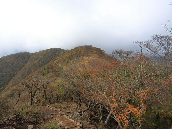 1200m以上の稜線の紅葉美に驚く!