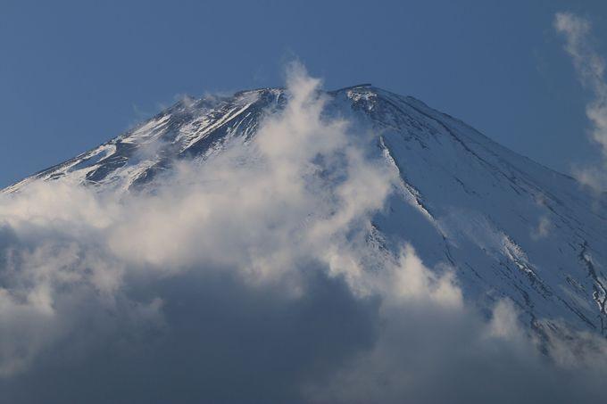 隣接する「富士山樹空の森」は大迫力の富士山が!