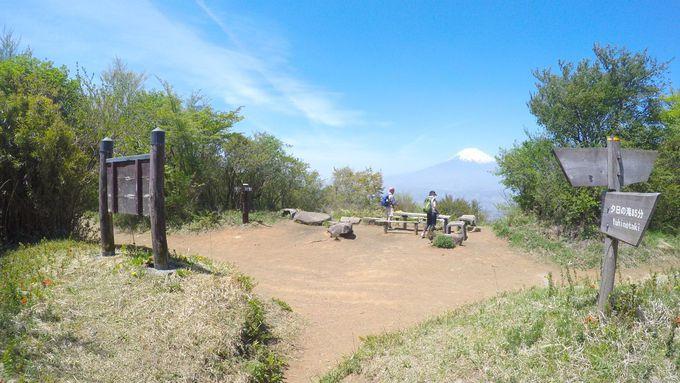猪鼻砦跡で壮大な富士山を眺める!金時山への分岐点としても