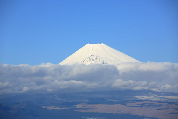 富士山、駿河湾、相模湾、箱根連山!を独り占め!