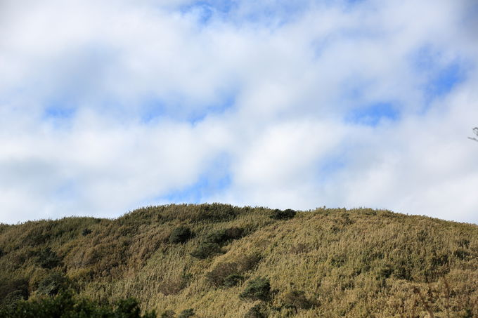 笹原を縫って山頂では壮大なスケールのパノラマを!