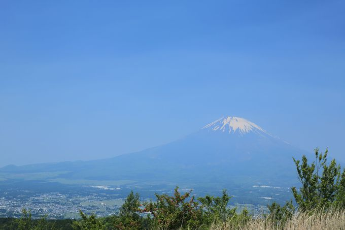矢倉岳山頂は広く富士山の大展望!