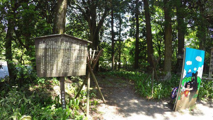 足柄峠付近は、足柄明神・足柄関所・足柄城址と史跡の宝庫