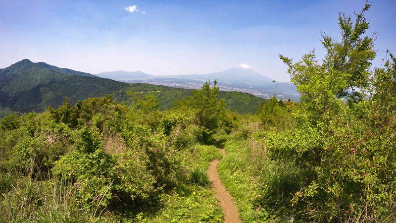 ど〜んと富士山!山頂まで1時間半の神奈川矢倉岳ハイキング
