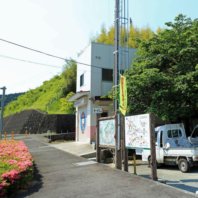駿河と相模の境目!標高870mの神奈川・矢倉岳
