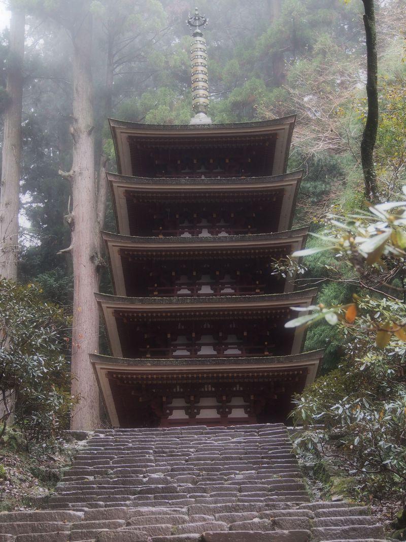 女性なら1度は訪れたい!しっとりたたずむ紅葉美。奈良県「室生寺」で静かに時の流れを楽しむ