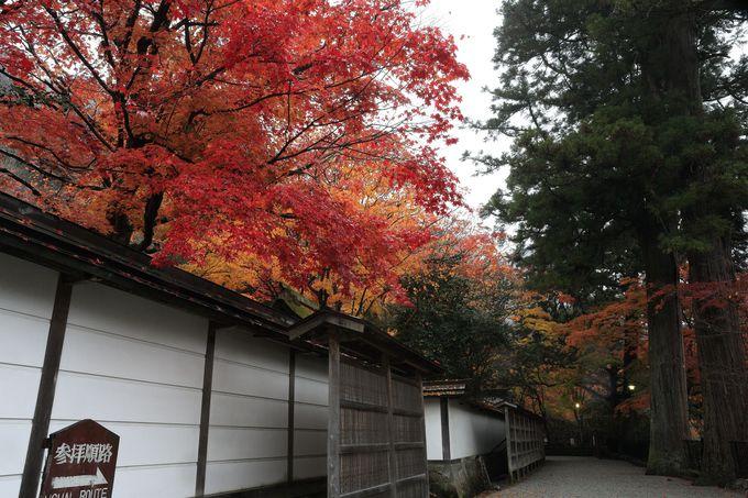 室生寺は「女人高野」の別名を持つ歴史寺院