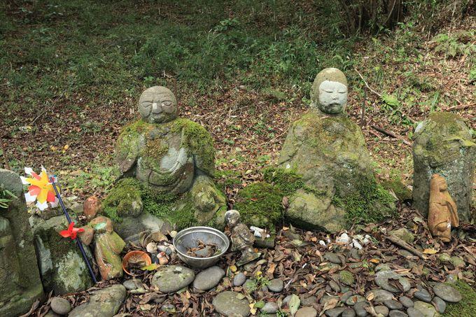 「日金山石仏の道」で自然と歴史を楽しむハイキングを