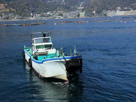 獲ったど〜!と叫ぶ!漁船に乗ってチャレンジする熱海網代海上釣の楽しさ