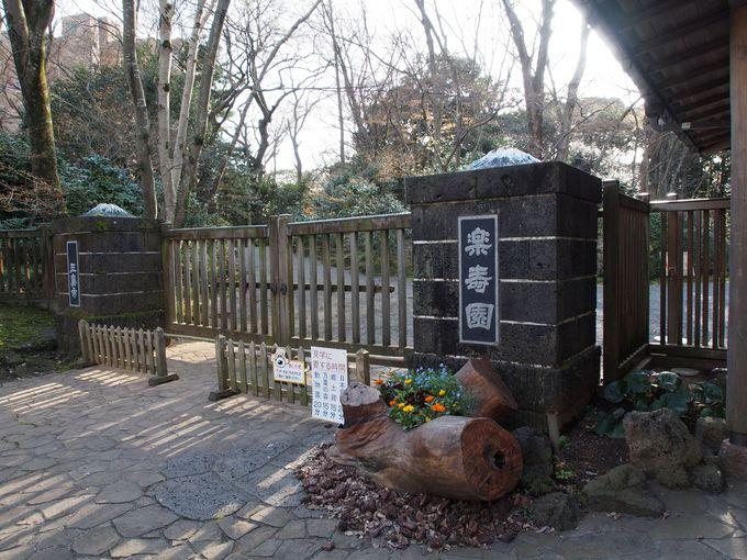近くには国指定天然記念物・名勝「楽寿園(らくじゅえん)」も