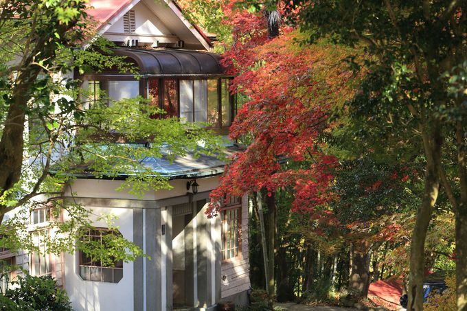 箱根17湯で唯一1軒だけが残る底倉温泉は元医院!