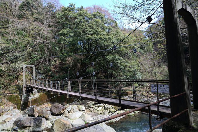 幽谷の堂ヶ島渓谷遊歩道は宮ノ下か木賀温泉入り口から