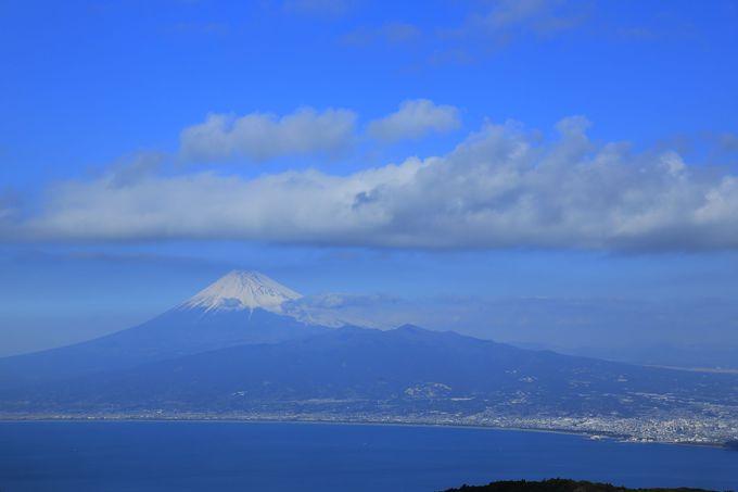 達磨山まではアップダウンを繰り返す縦走ルートで
