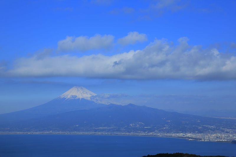 富士山絶景360°!達磨山とわさび1本丸ごとご当地蕎麦