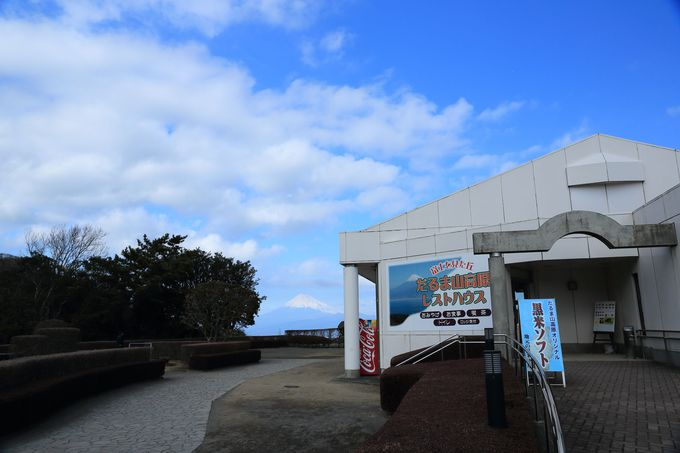 達磨山高原レストハウスにはバスかマイカーで!