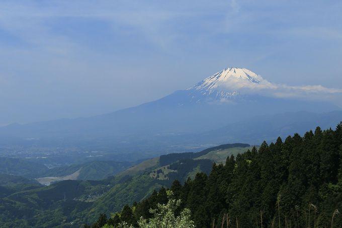 秀麗な富士山をゆったりと眺める「高松山」