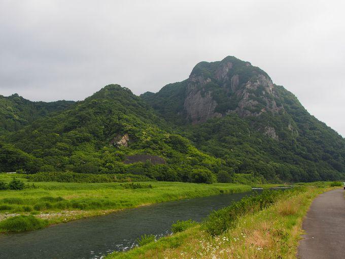 城山(じょうやま)は自然の宝庫!
