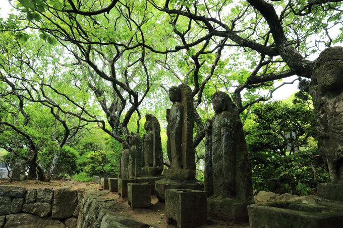 隣にある香林寺は500年以上続く古刹!風情あふれる寺内は必見!