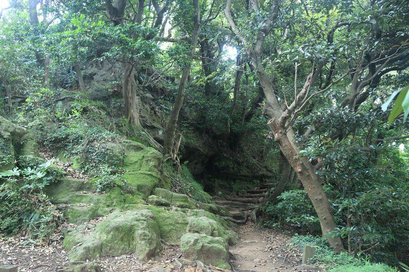 天然の防衛網!神奈川・鎌倉アルプスの歴史探索ハイキング