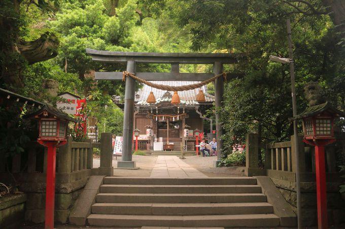 足を延ばして「祇園山ハイキングコース」で八雲神社まで