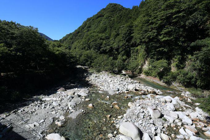 西丹沢でも静かな山として有名!沢の多さは特筆すべきもの