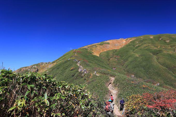 頂を目指し登っていく楽しさ!