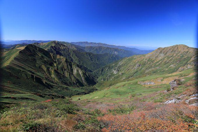 四季を通して美しい谷川岳!特に秋は色彩のグラデーションで絨毯のように