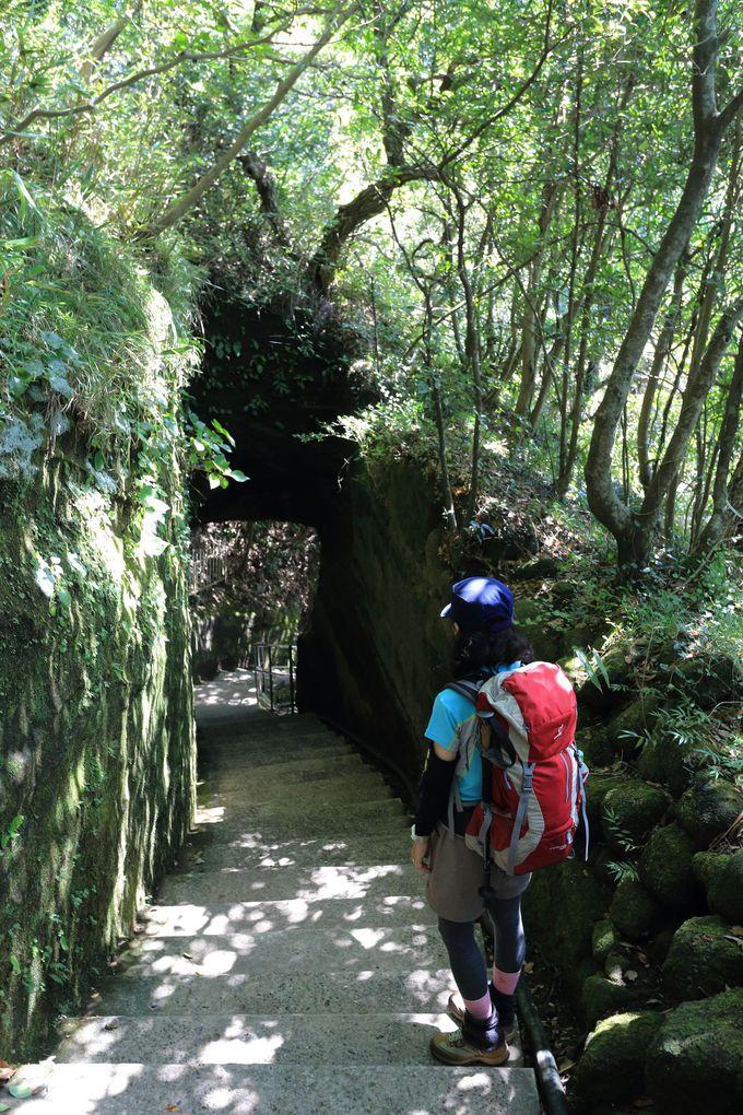 百尺観音の大きさ!日本最大の大仏!日本最古の「日本寺」の凄さ
