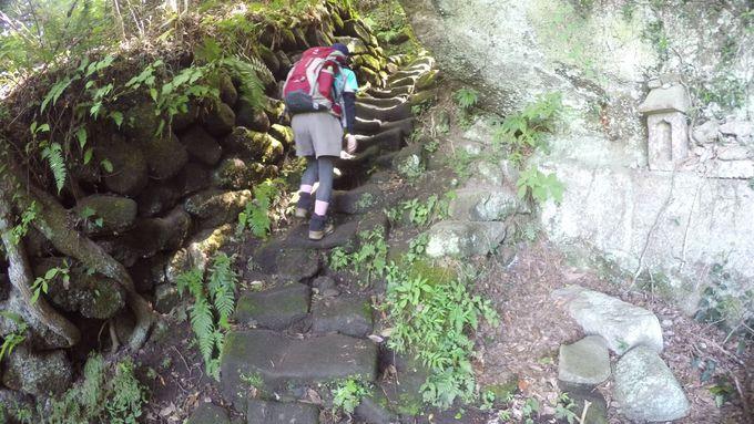 登山初心者から上級者までまで多彩なルート!