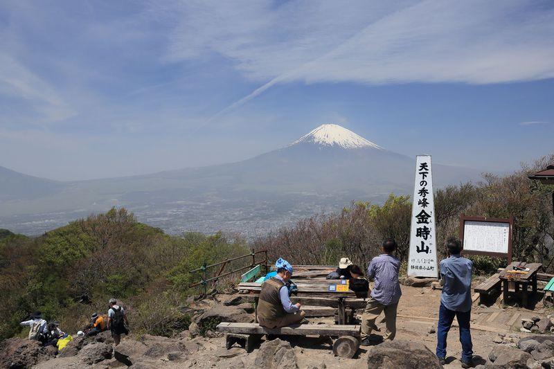 約1時間!混雑なし!神奈川・金時山ハイキングで絶景富士を