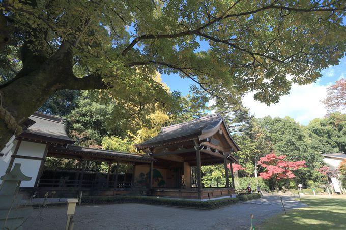 武田信玄を祀る「武田神社」や、再現された大手門がある「甲府市歴史公園」も
