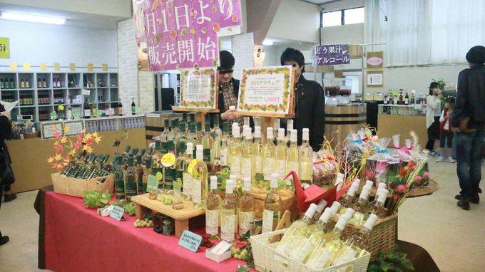石和温泉駅からすぐの「モンデ酒造」で、ワイン工場見学とテイスティング