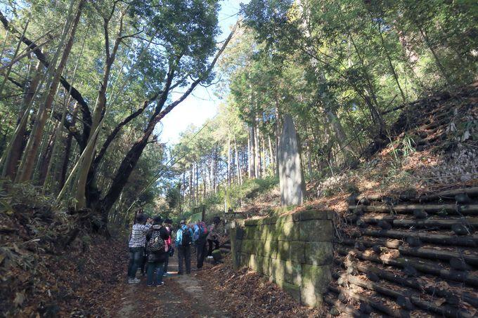 JR両毛線「大平下駅」から始まる、誰でも行ける彩深いハイキングコース