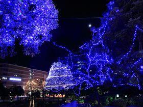 冬に訪れたい宮城県の観光スポット9選 イルミネーションに温泉も!