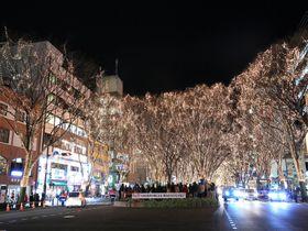 冬に訪れたい仙台の観光スポット10選 恋人の聖地に仙台グルメも!