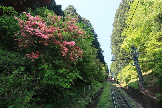 JR御嶽駅よりバスでケーブルカー乗り場へ!パワースポット「安産社」へも