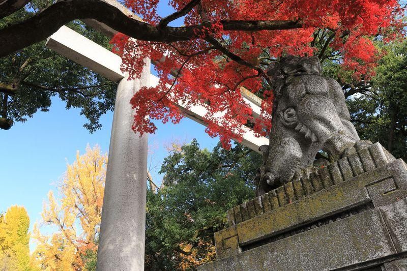 秀作彫刻の由緒ある秩父神社!秩父の街歩きで病みつき銘菓も