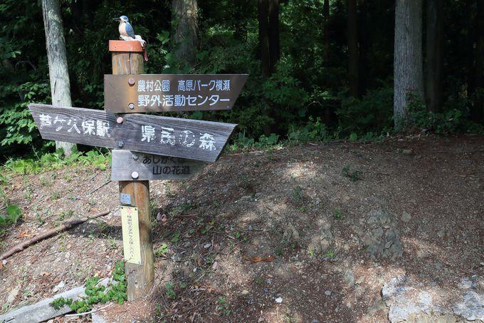 山の花道のスタートは、西武鉄道秩父線「芦ヶ久保」駅から
