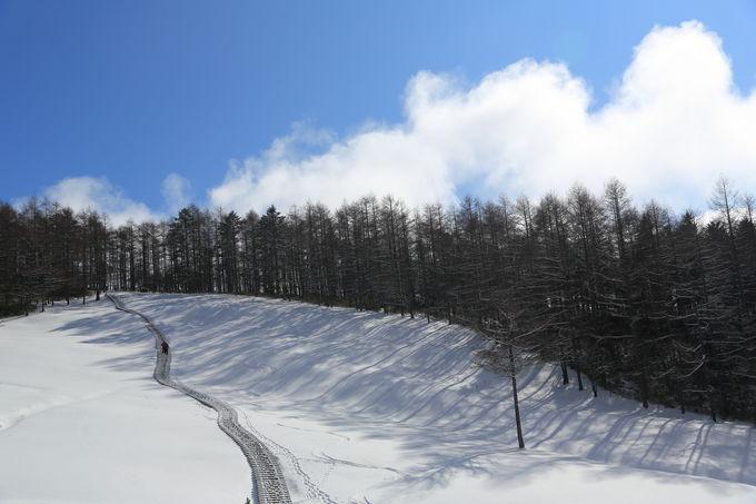 軽アイゼンを履いて、手軽な雪山トレッキングも