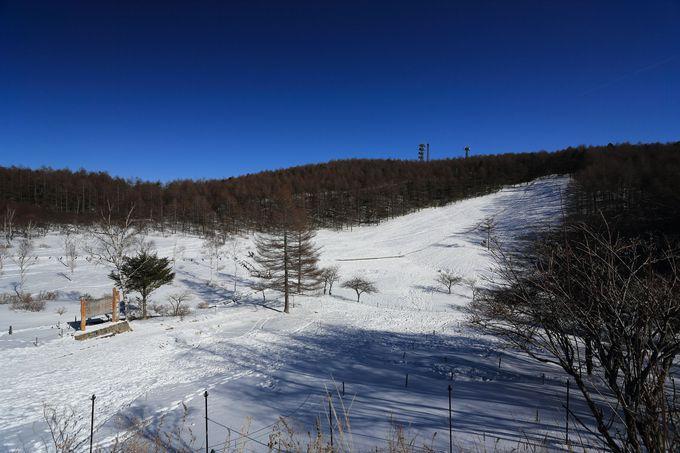 手ぶらOK!ゴンドラ山頂駅〜入笠山山頂をスノーシュー雪散歩
