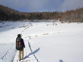 手ぶらでも楽しめる!長野「入笠山」のお手軽雪山自然散策