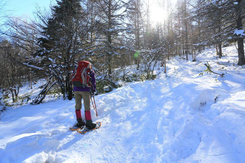 手ぶらで◎冬の長野「入笠山」お手軽スノーシュー散歩