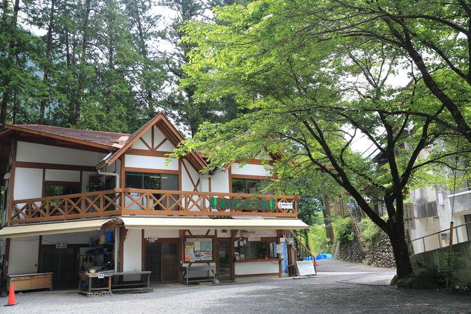 年中楽しめる「氷川キャンプ場」!駅チカで手ぶらキャンプも