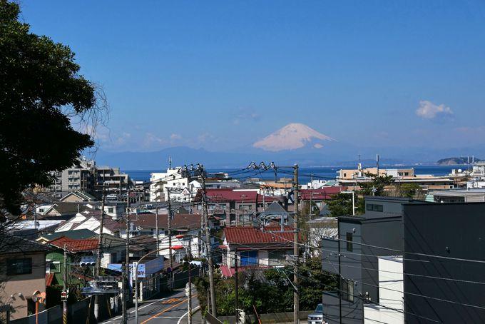 仙元山ハイキングコースはJR逗子駅、京浜急行電鉄新逗子駅からバスで