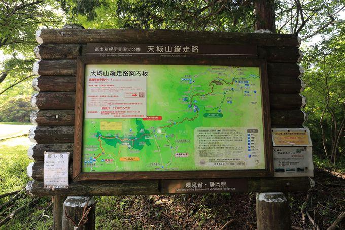日本百名山「天城山」をその足で確かめる「シャクナゲルート」