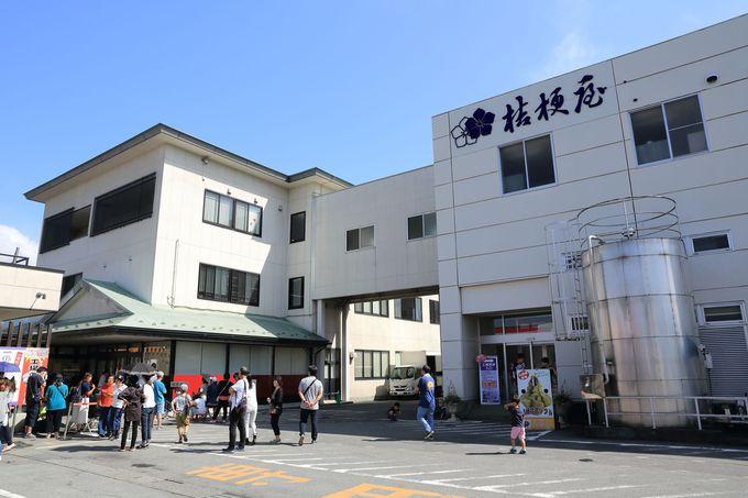 5.桔梗信玄餅工場テーマパーク/山梨