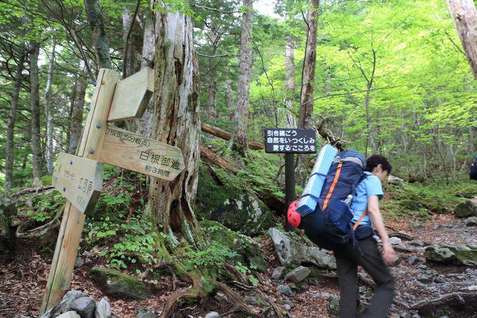 北岳は広河原バス停より登山開始!JR甲府駅から季節運行のバスで