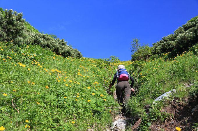 草スベリルートで山頂を目指す。ルートを動画で紹介!